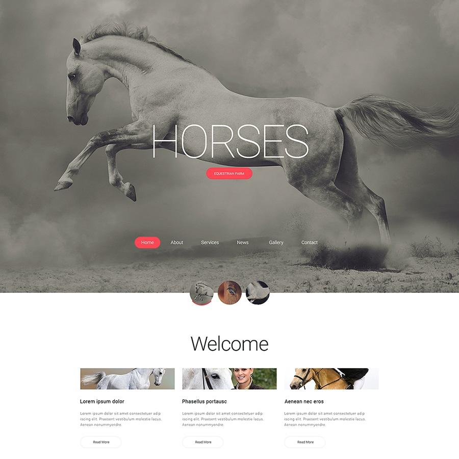 Horses Responsive HTML Template Website Template