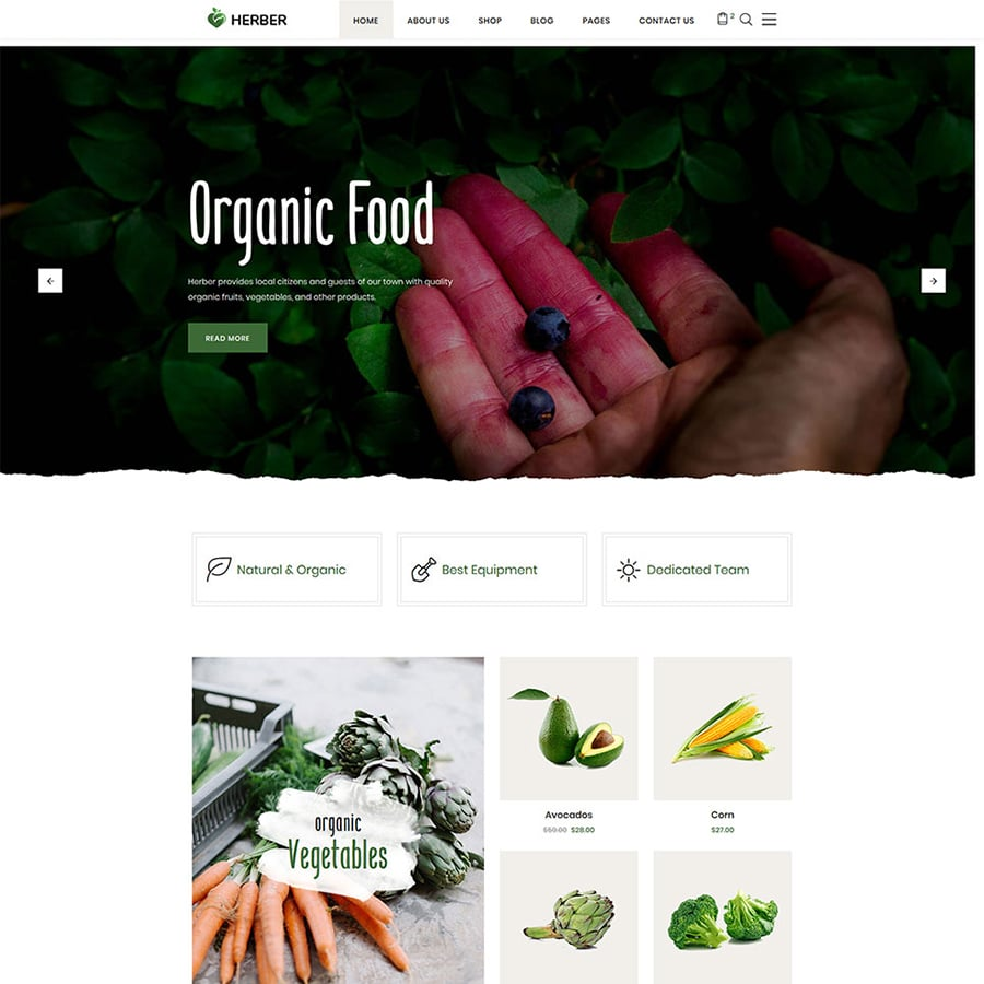 Best Agro Website Templates Abundant Harvest from Developers