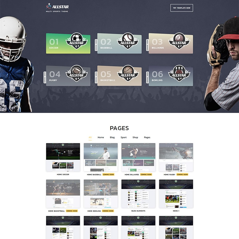 Multi Sports Theme Website Template