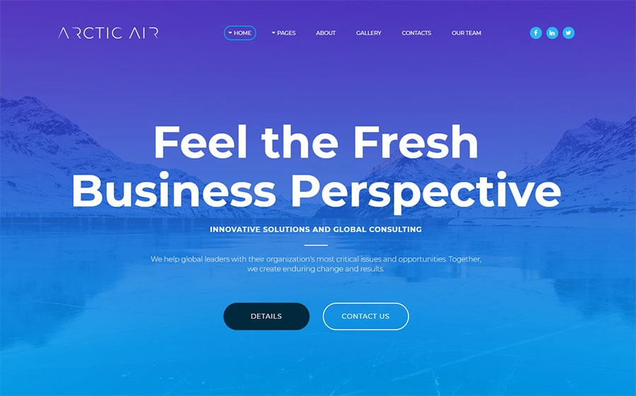 Arctic Website Template