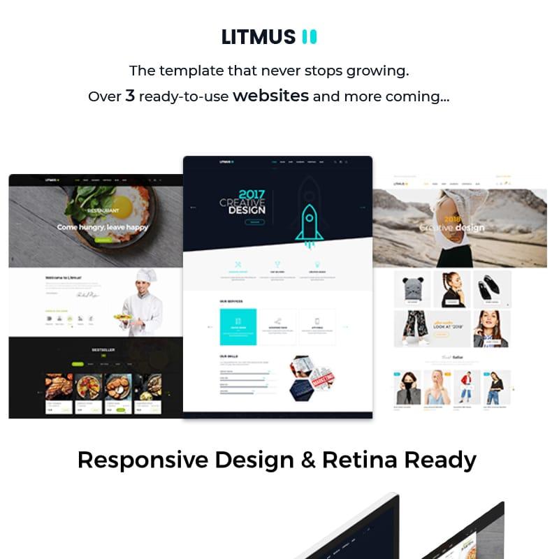 Litmus Website Template