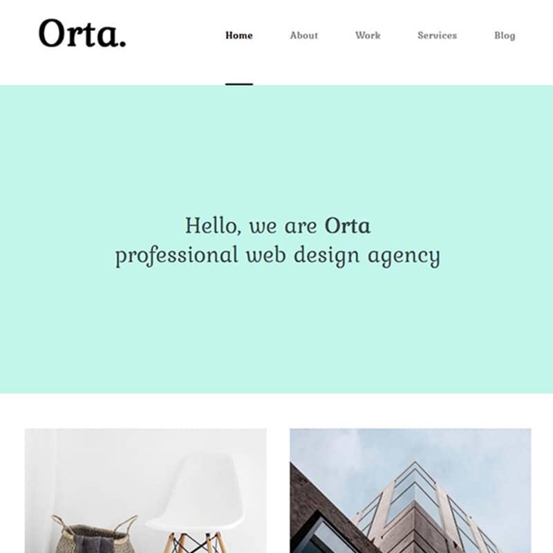 Orta Website Template