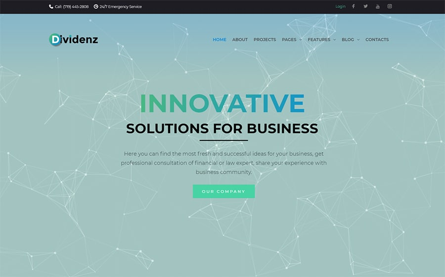 Dividenz Website Template