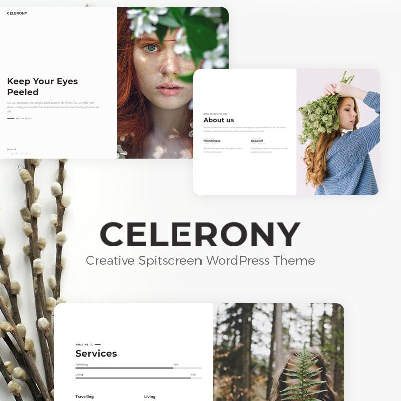 Celerony Website Template