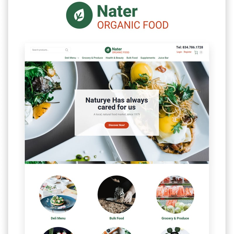 Nater Website Template