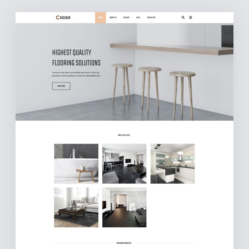 Coverur Website Template