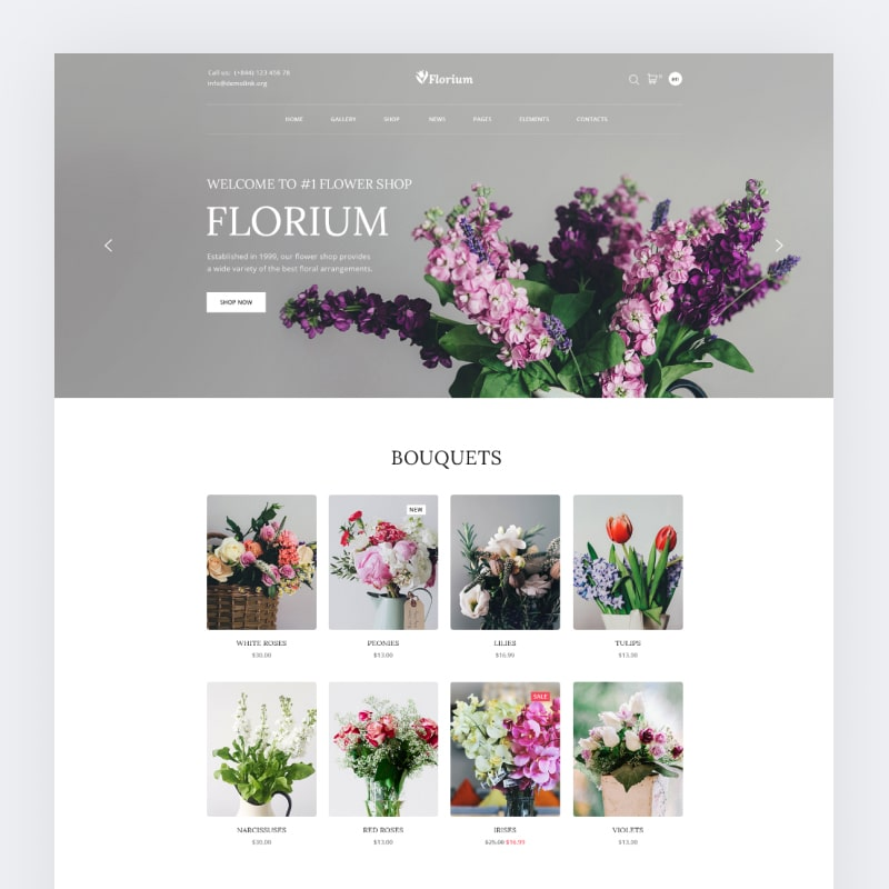 Florium Website Template