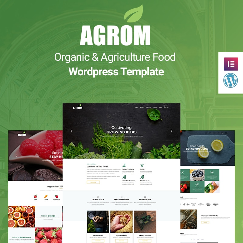 Agrom Website Template