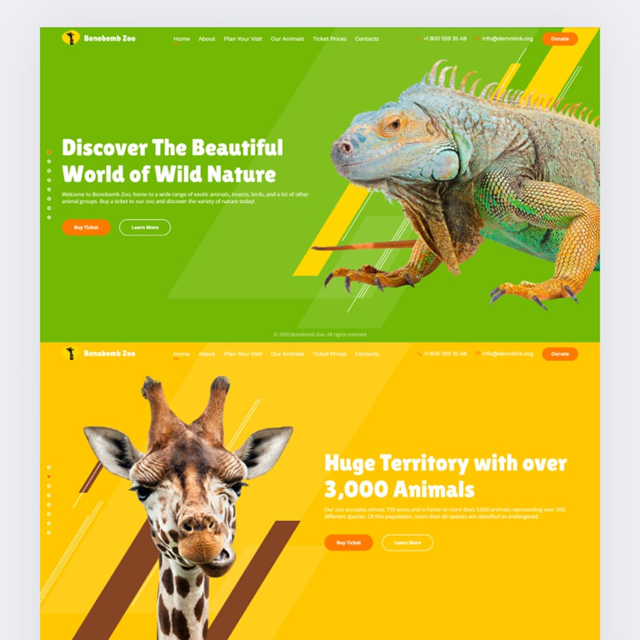 15 Animated Website Templates Without Any Limits for Your Imagination
