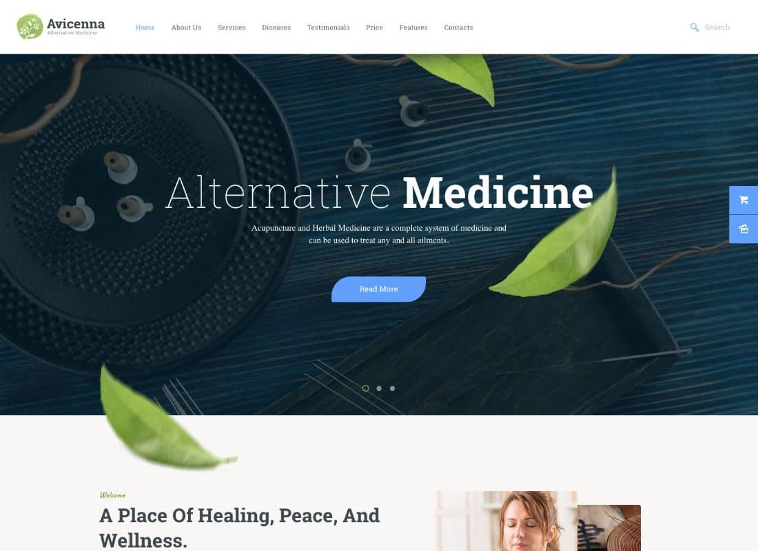 Avicenna | Alternative Folk Medicine Doctor WordPress Theme Website Template