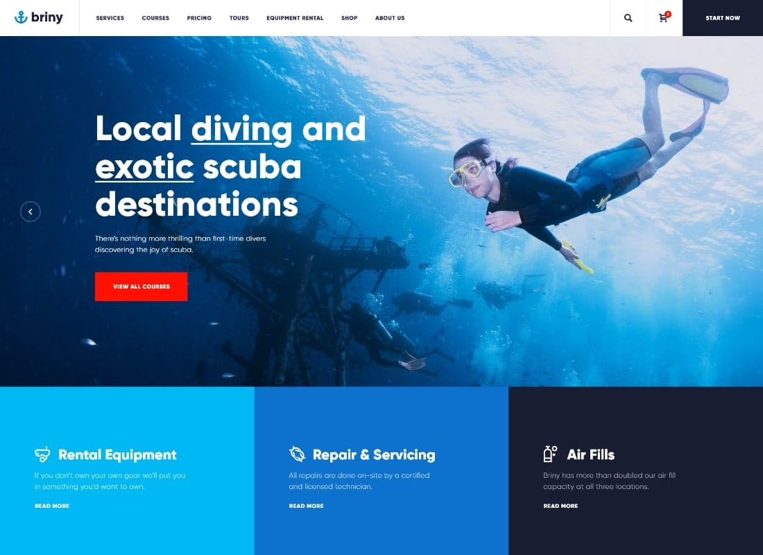 Briny | Scuba Diving School & Water Sports WordPress Theme + RTL Website Template