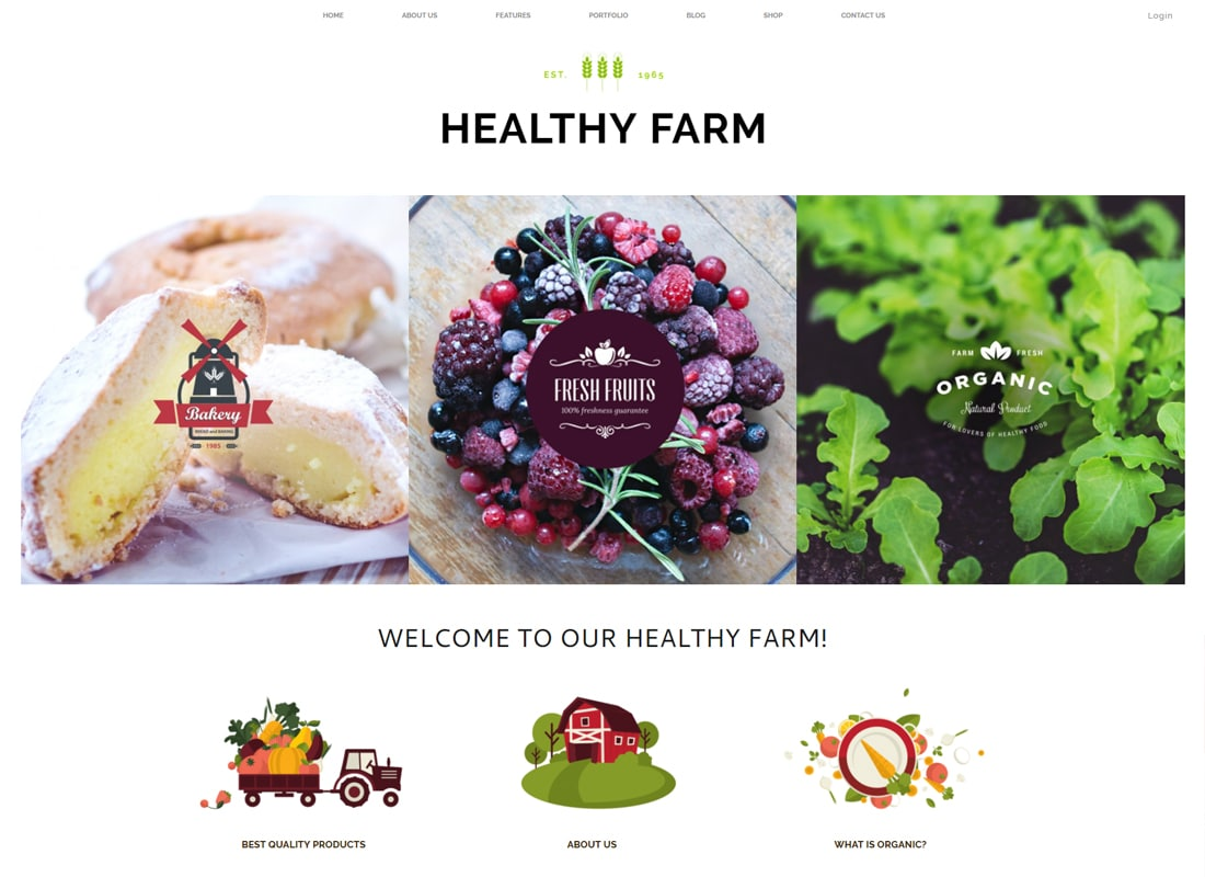Healthy Farm - Food & Agriculture WordPress Theme   Website Template