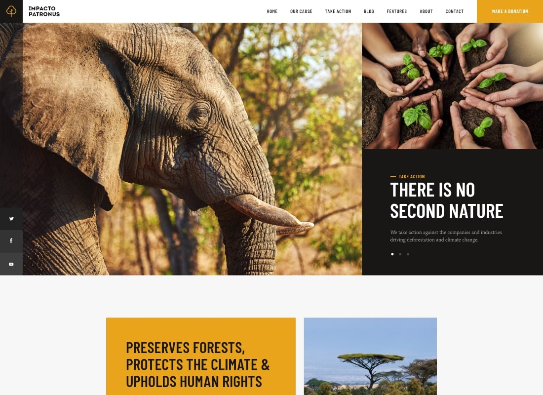Impacto Patronus | Petitions & Social Activism WordPress Theme Website Template