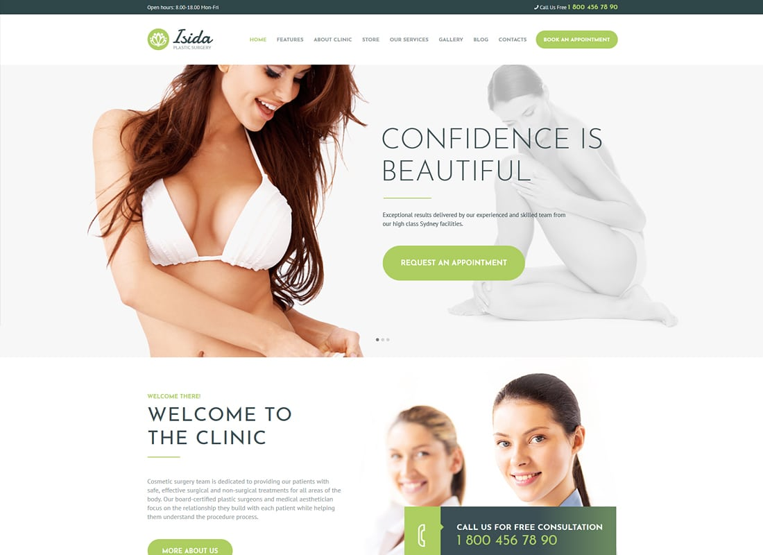 Isida - Plastic Surgery Clinic | Medical WordPress Theme   Website Template
