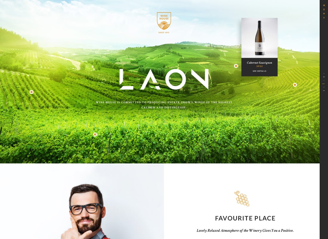 Laon | Wine House, Vineyard & Liquor WordPress Theme + Shop Website Template