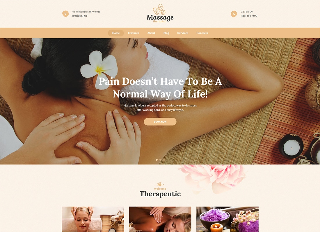 Massage Therapist and Spa Salon WordPress Theme   Website Template