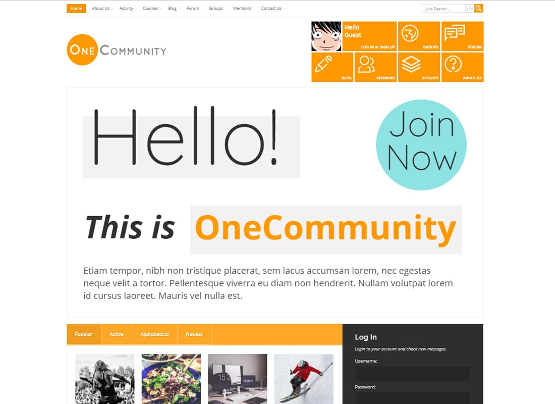 OneCommunity - BuddyPress Community e-Learning LMS Theme Website Template