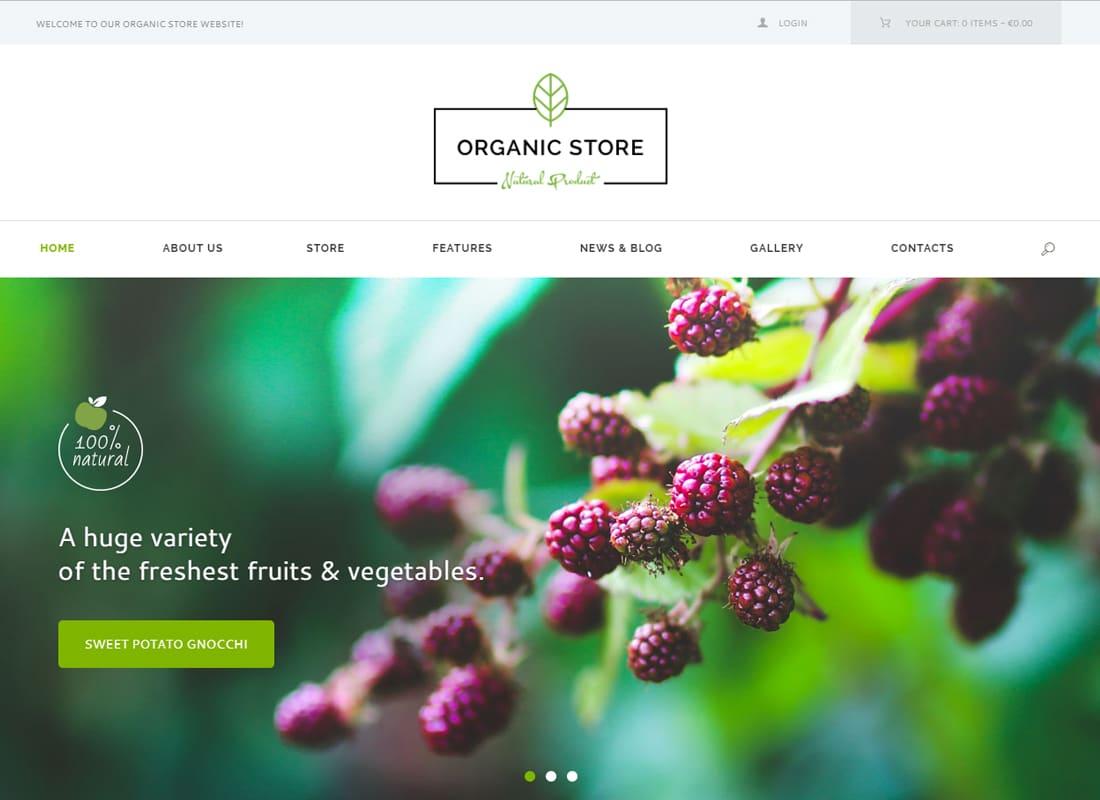 Organic Store - Organic Food & Eco Products WordPress Theme + RTL   Website Template