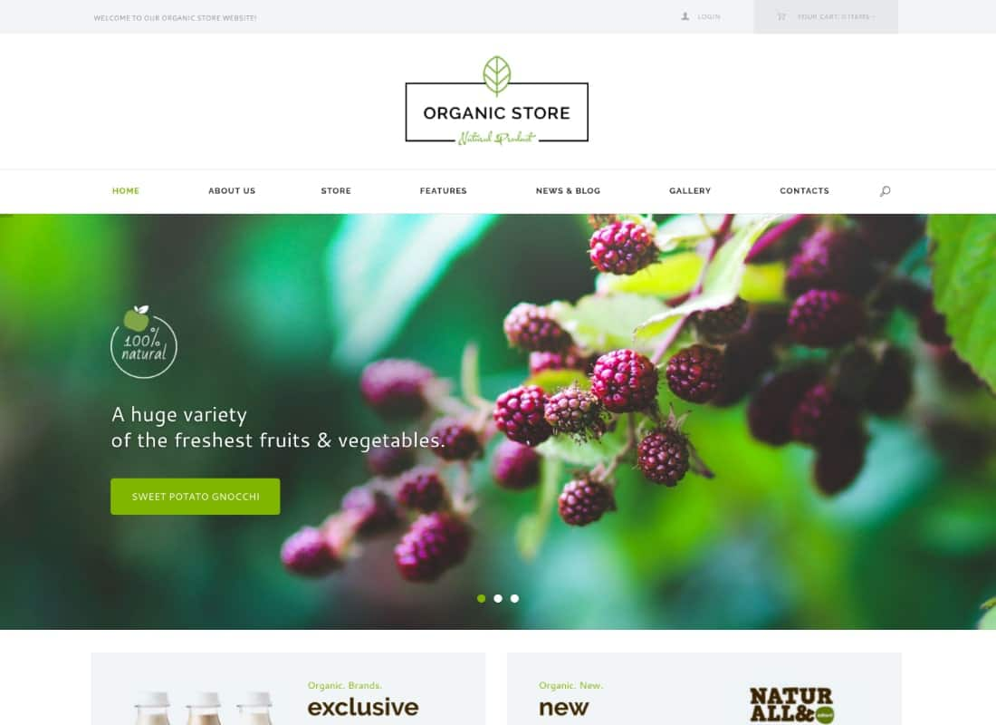 Organic Store | Food & Eco Products Shop WordPress Theme + RTL Website Template