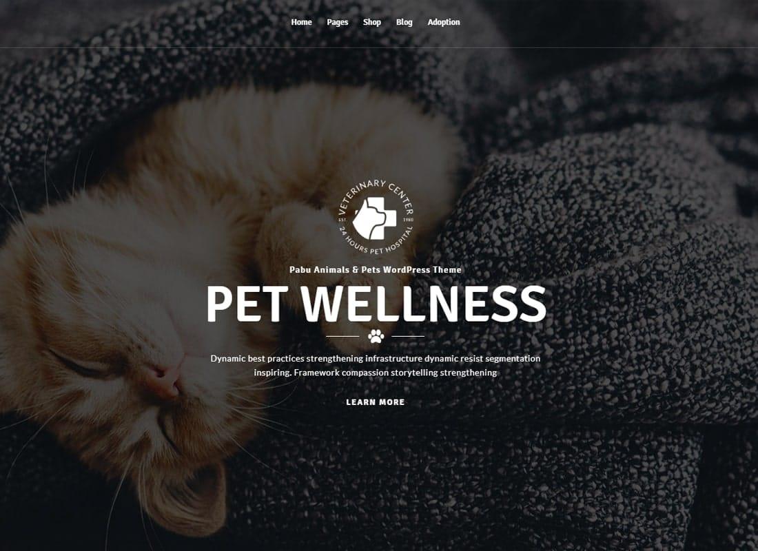 Pabu – Animals and Pets WordPress Theme Website Template