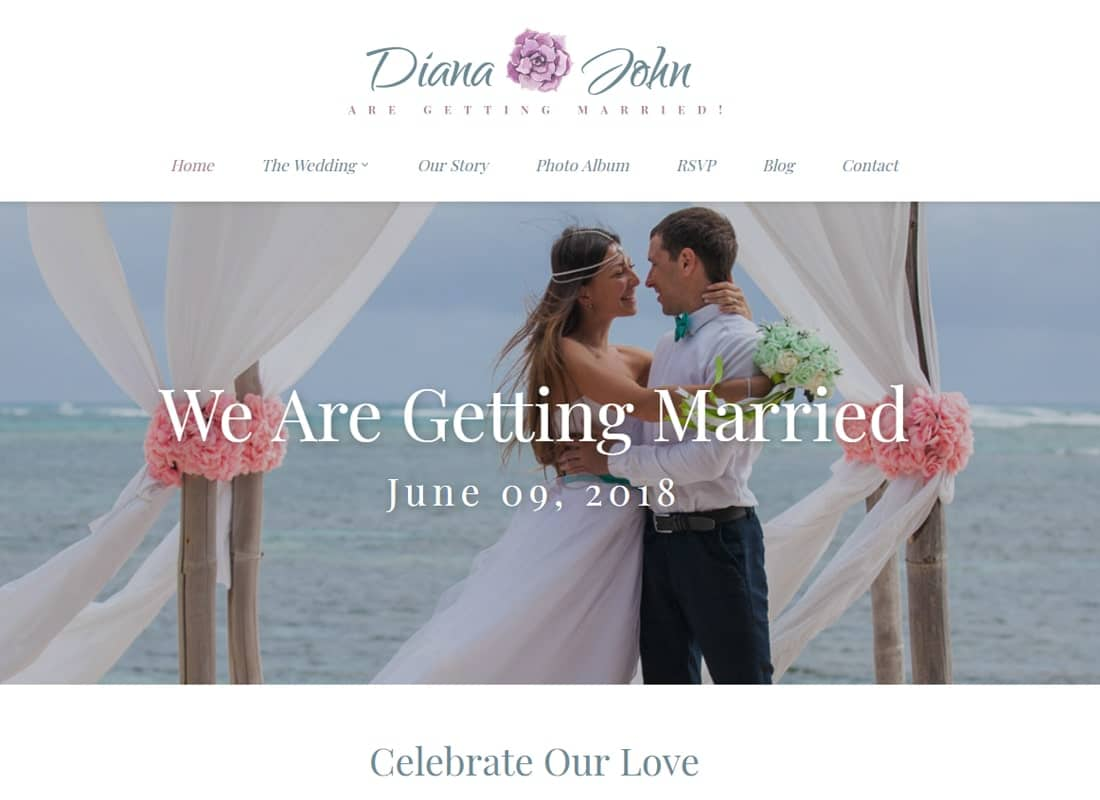Special Day - Wedding Planner WordPress Theme Website Template