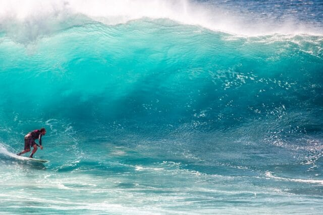 10 Most Thrilling Surfing WordPress Themes