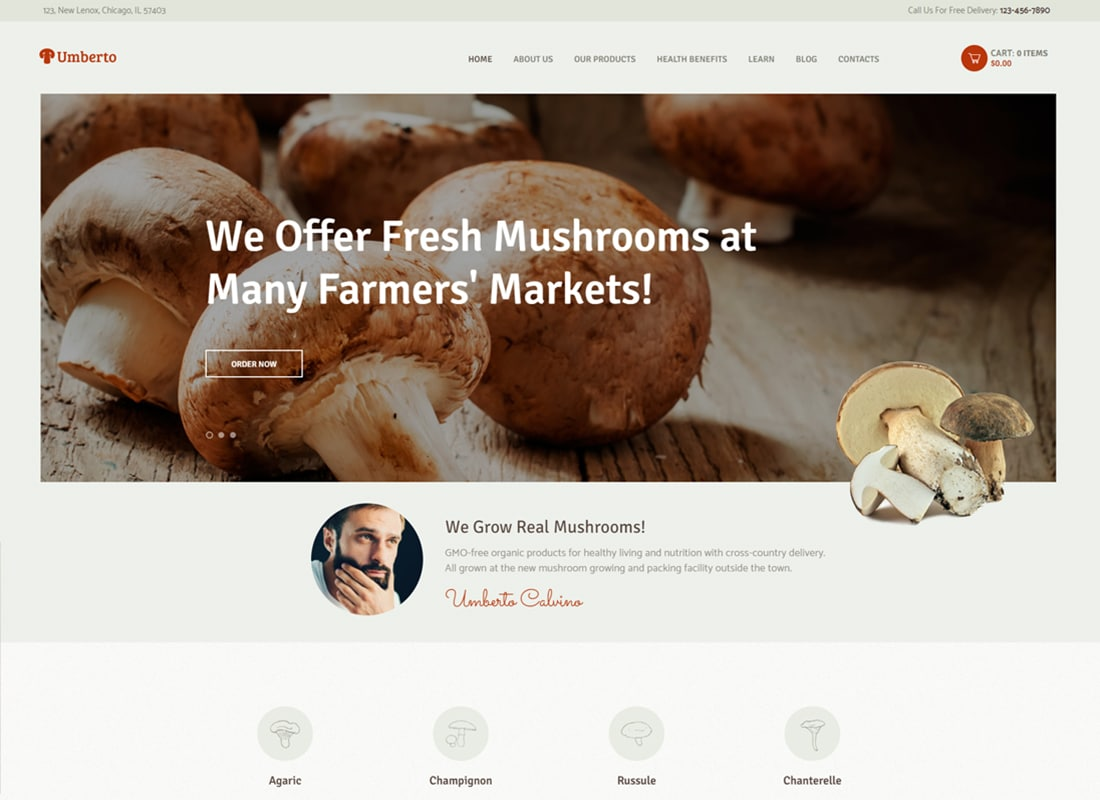 Umberto - Mushroom Farm & Organic Products Store WordPress Theme   Website Template