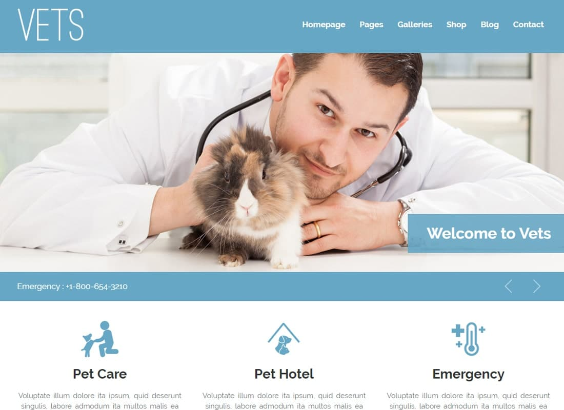 VETS - Veterinary Medical Health Clinic WP Theme Website Template