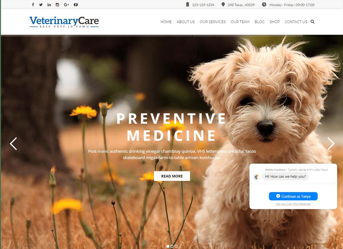 Vet Care - Pet Care & Veterinary WordPress Theme Website Template