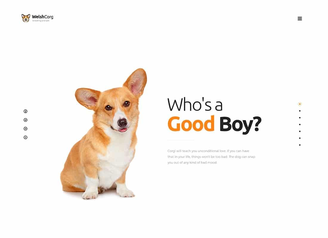 Welsh Corgi | Dog Breeding and Sale WordPress Theme Website Template