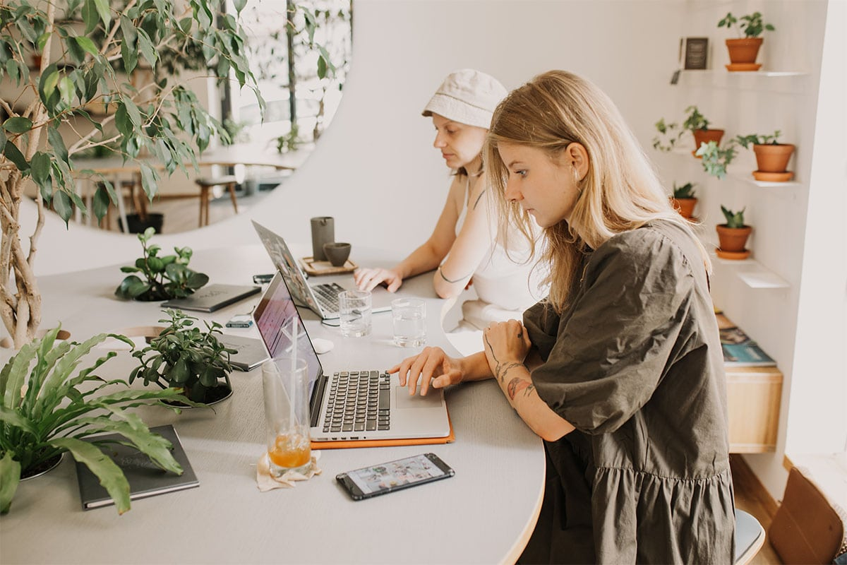 Best WordPress Themes for Freelancers 2021 to Keep Up the Good Work During the Lockdown