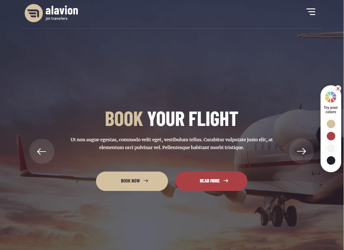 Alavion - Private Jet Charters WordPress Theme Website Template