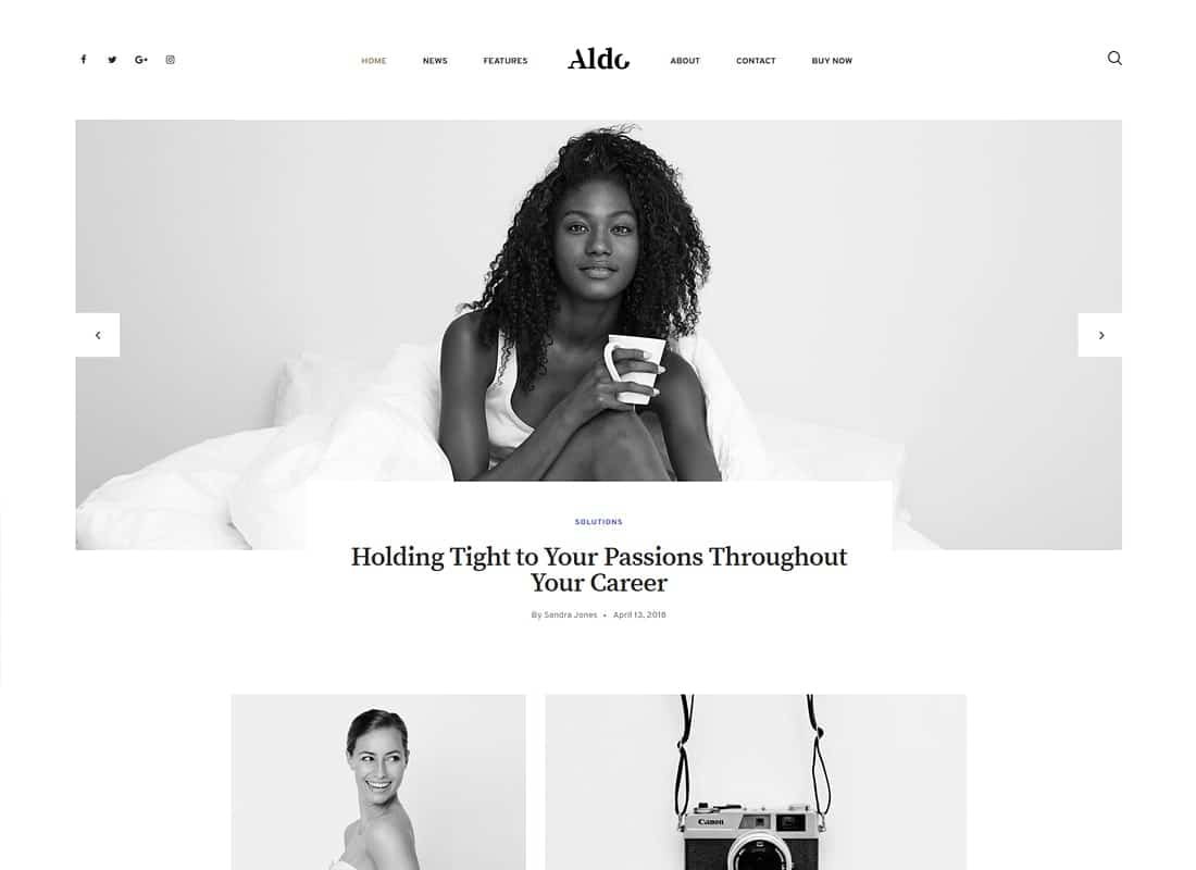 Aldo | Gutenberg Blog WordPress Theme Website Template