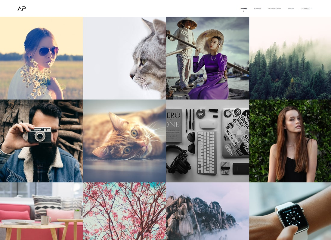 Apola | Photography Portfolio WordPress Theme Website Template