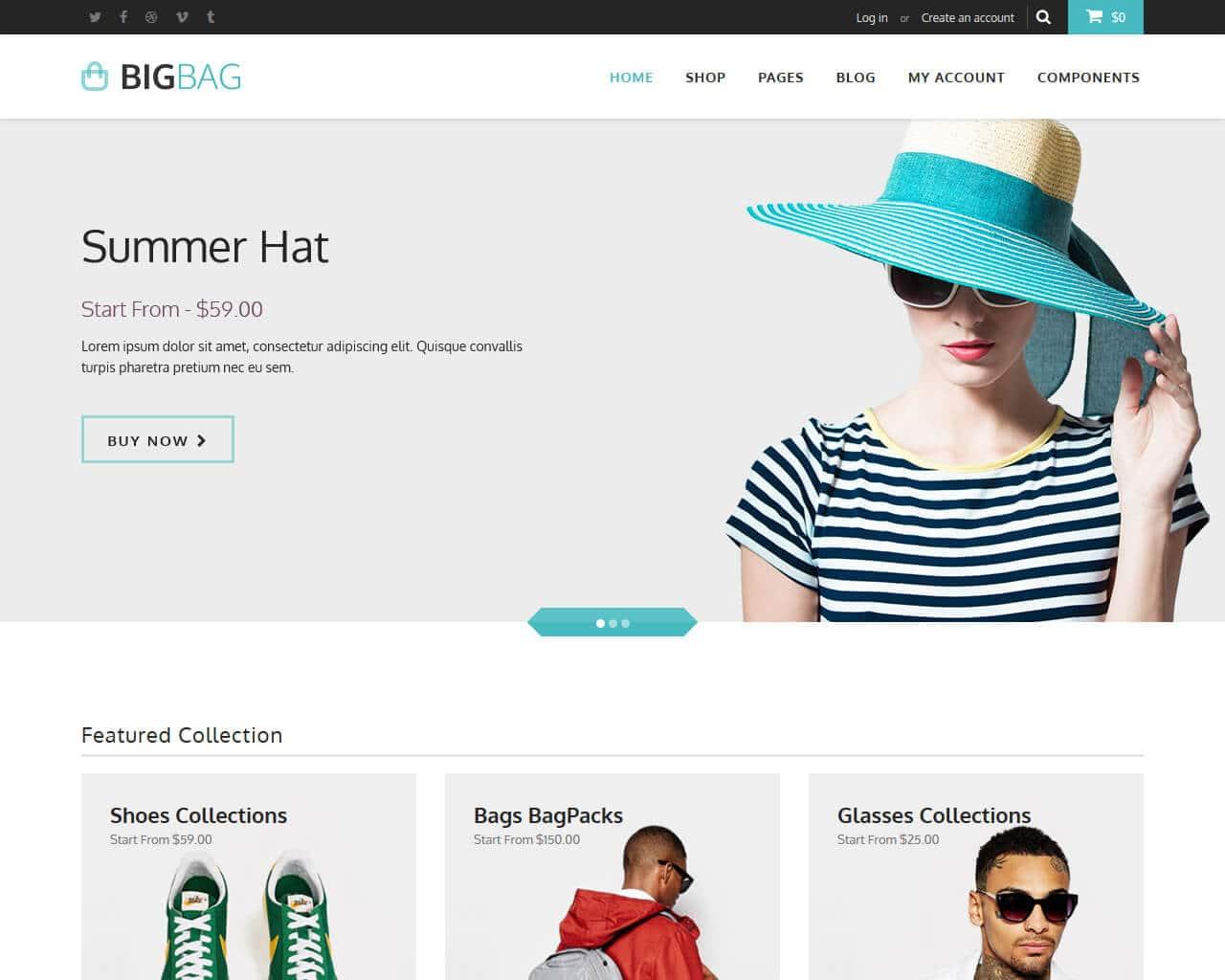 BigBag Store Website Template