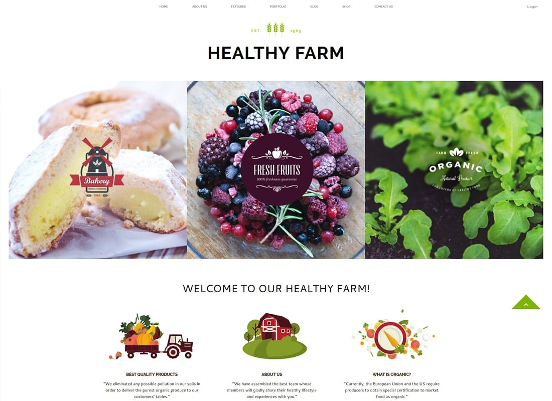 Healthy Farm | Food & Agriculture WordPress Theme Website Template