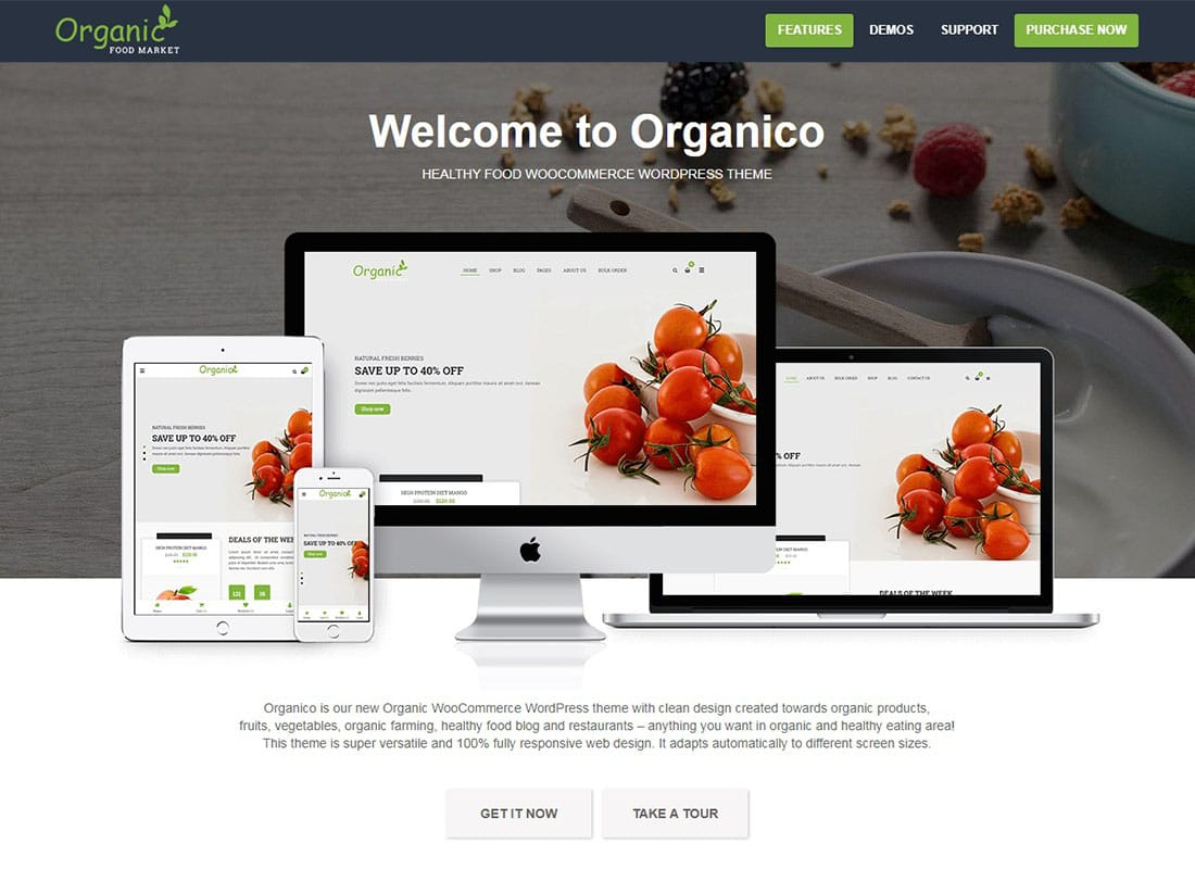 Organico - Organic Farm and Healthy Food WooCommerce WordPress Theme Website Template