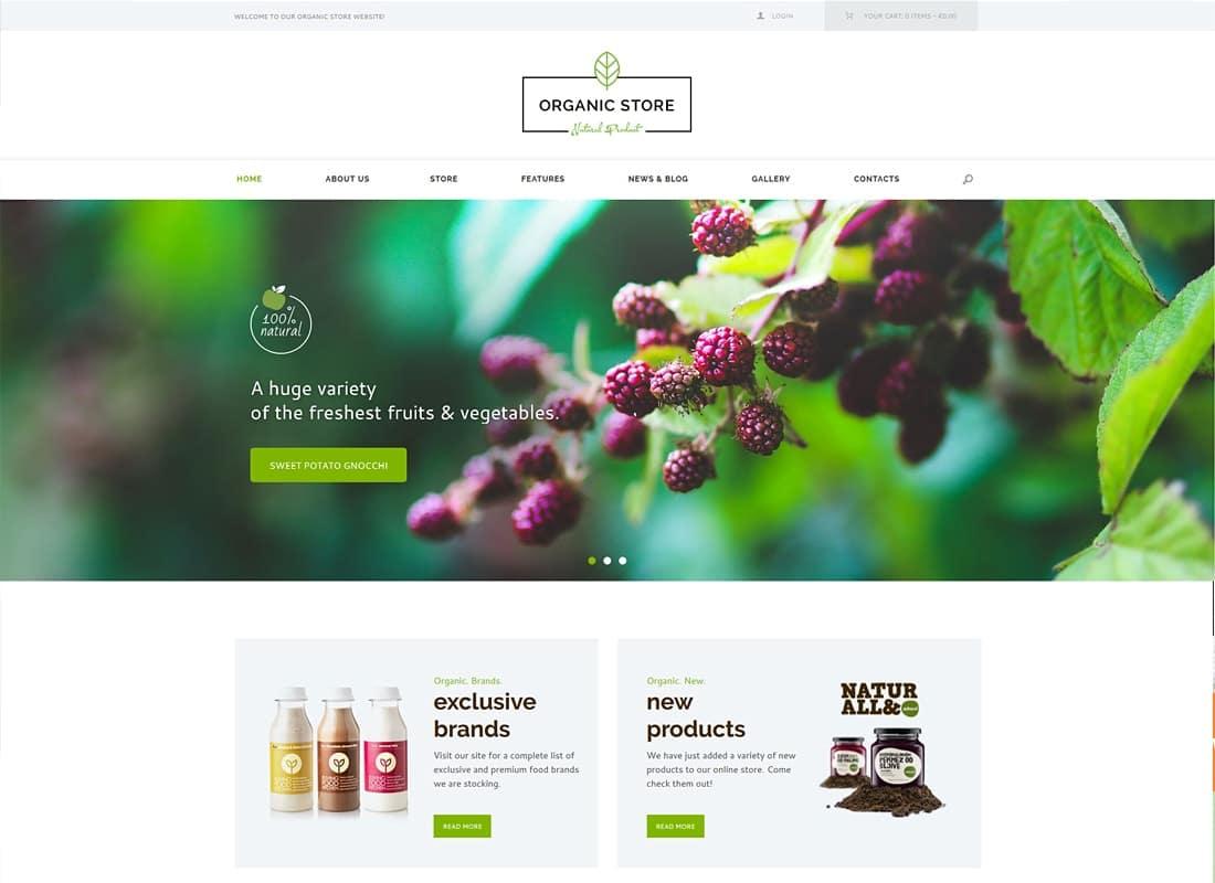 Organic Store | Eco Products Shop WordPress Theme + RTL Website Template