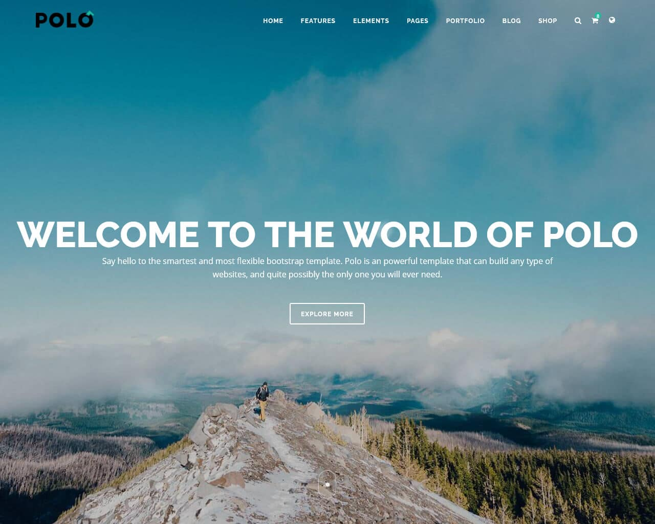 Polo Website Template