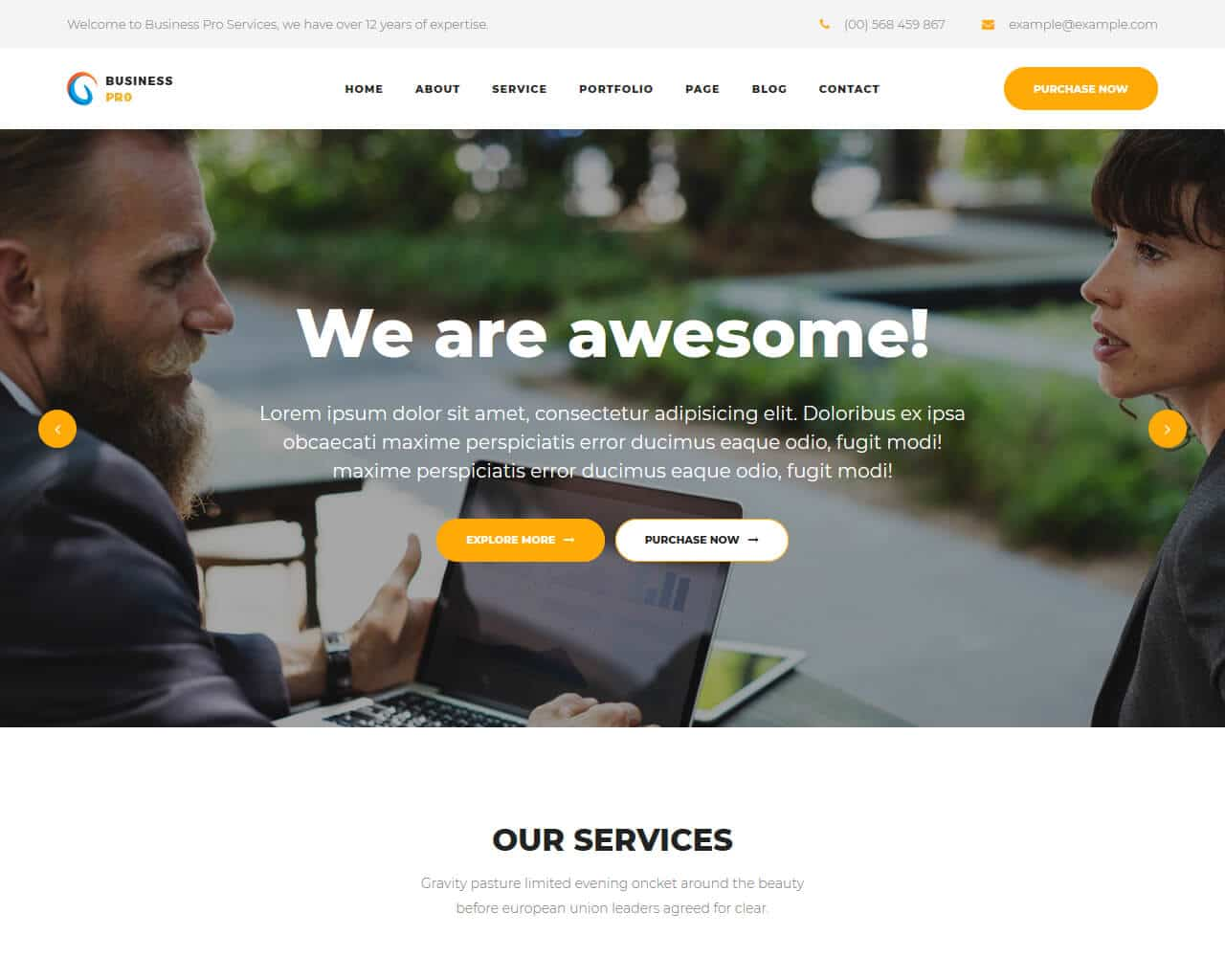 25+ Pro Business Website Templates 2019