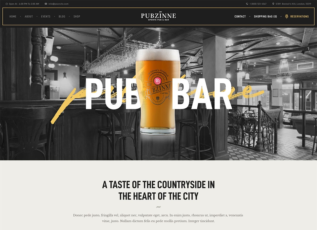 Pubzinne - Sports Bar WordPress Theme Website Template