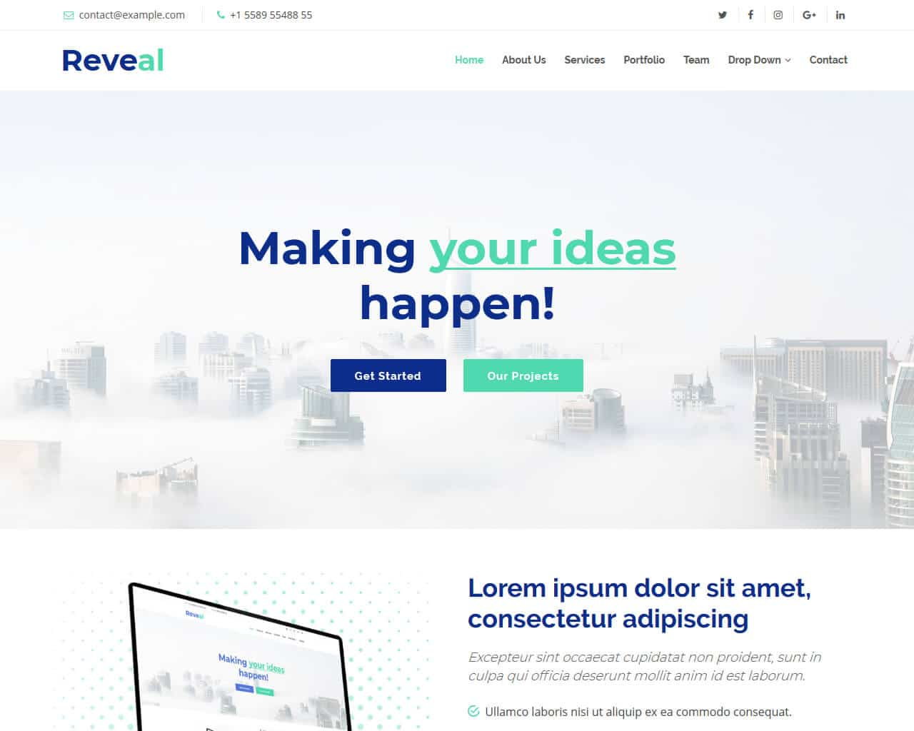 Reveal Website Template