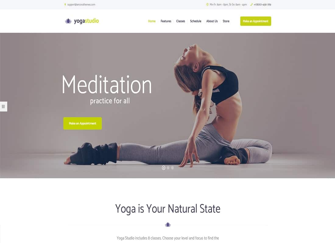Yogastudio, Gym and Healthcare WordPress Theme Website Template